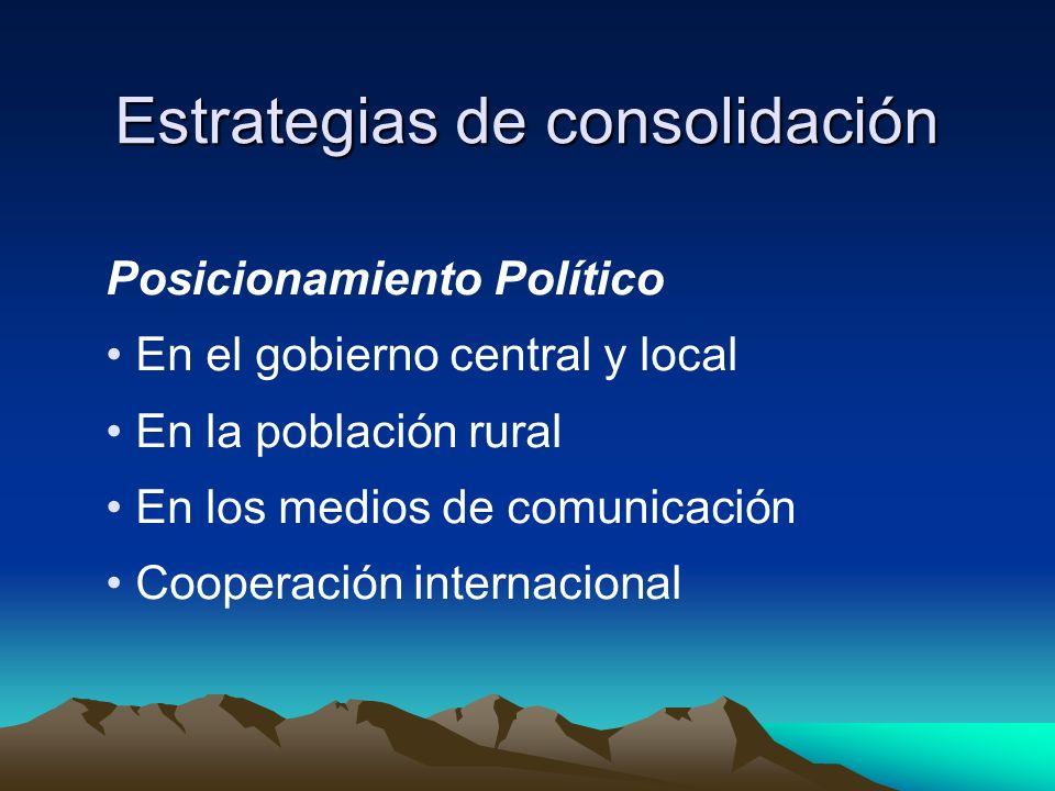 Estrategias de consolidación Posicionamiento Político En el gobierno central y local En la población rural En los medios de comunicación Cooperación i