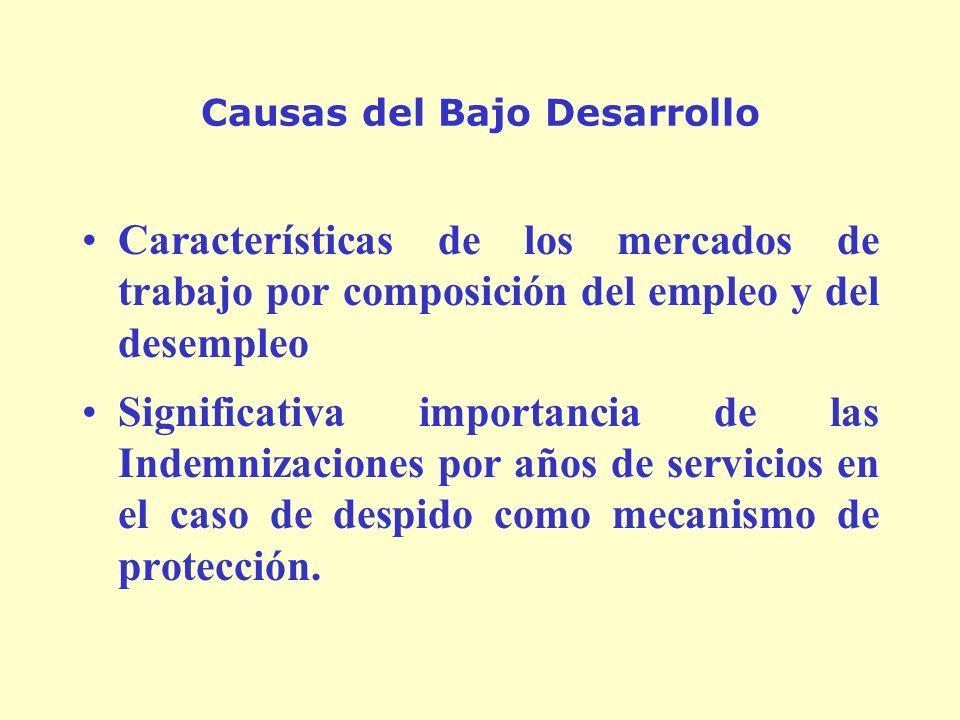 Causas del Bajo Desarrollo Características de los mercados de trabajo por composición del empleo y del desempleo Significativa importancia de las Indemnizaciones por años de servicios en el caso de despido como mecanismo de protección.