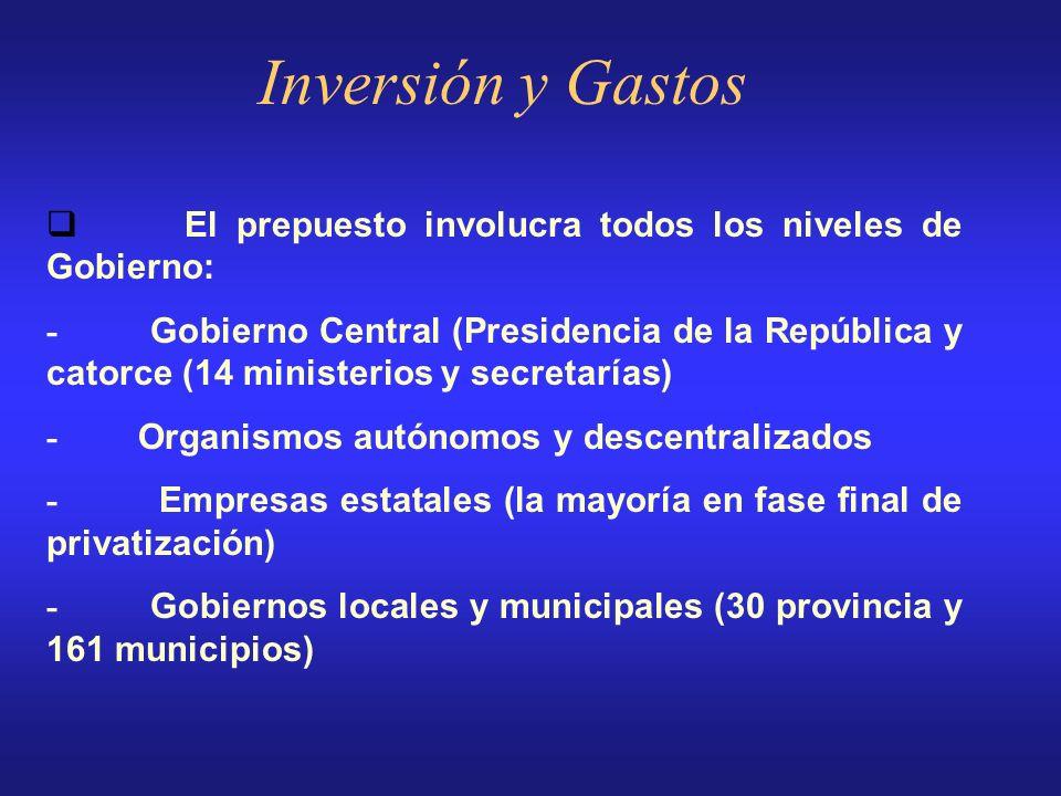 Inversión y Gastos Cada cuatro años se propone un Plan de Gobierno, que formalmente establece las directrices del Gobierno en cuanto a inversiones púb
