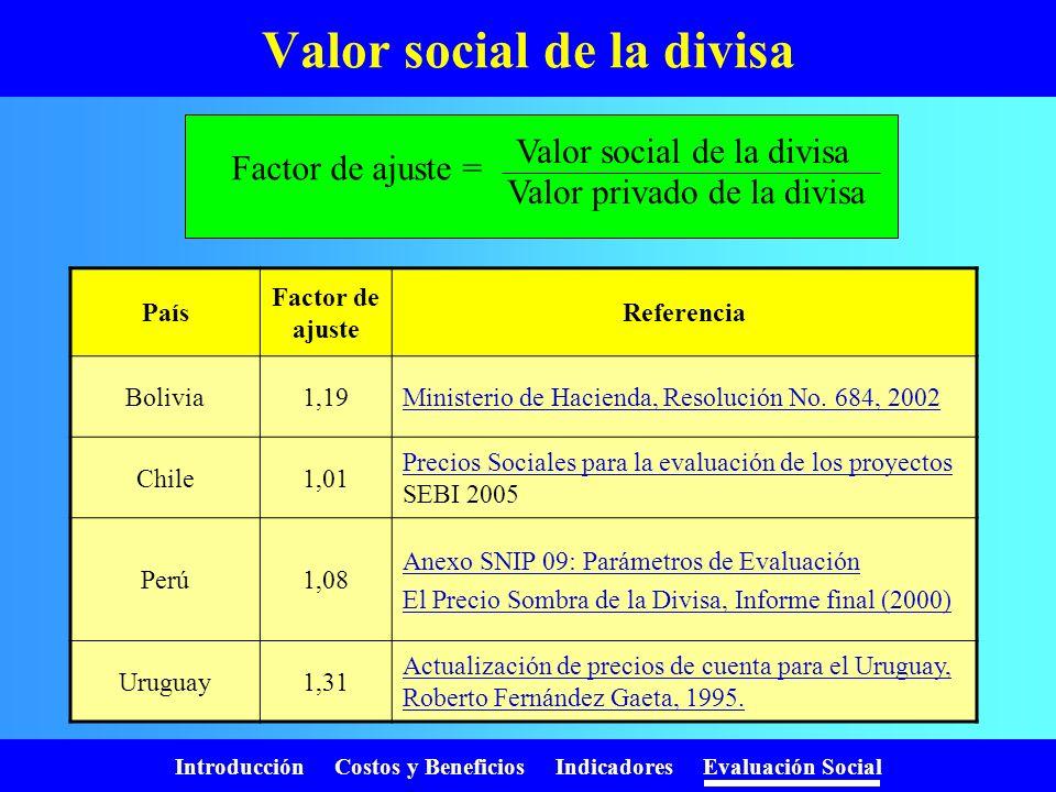 Introducción Costos y Beneficios Indicadores Evaluación Social Valor social de la divisa Proyecto consume y produce bienes y servicios. Estos pueden s