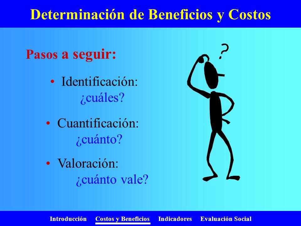 Introducción Costos y Beneficios Indicadores Evaluación Social ¿Para quién evaluamos? Persona o empresa: Evaluación Privada Todos los habitantes del p