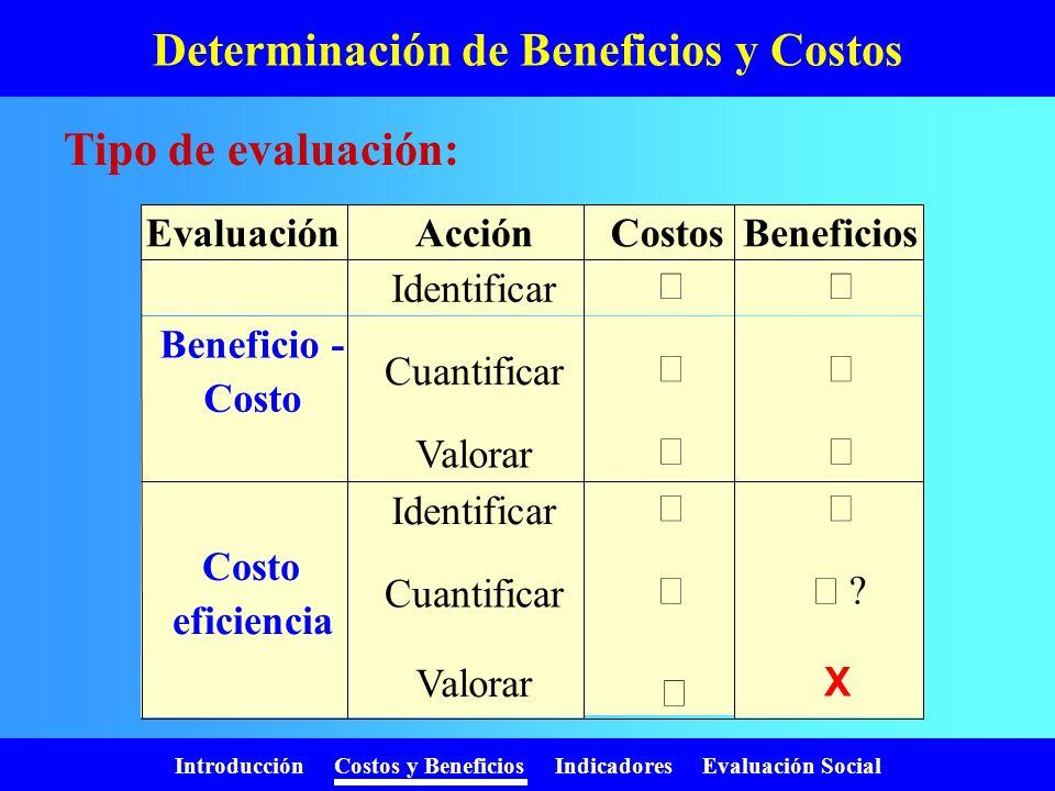 Introducción Costos y Beneficios Indicadores Evaluación Social Determinación de Beneficios y Costos Identificación: ¿cuáles? Pasos a seguir: Cuantific