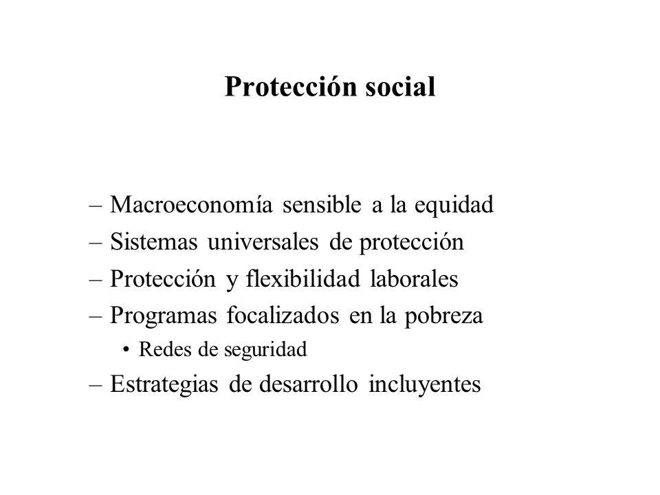 Protección social –Macroeconomía sensible a la equidad –Sistemas universales de protección –Protección y flexibilidad laborales –Programas focalizados en la pobreza Redes de seguridad –Estrategias de desarrollo incluyentes
