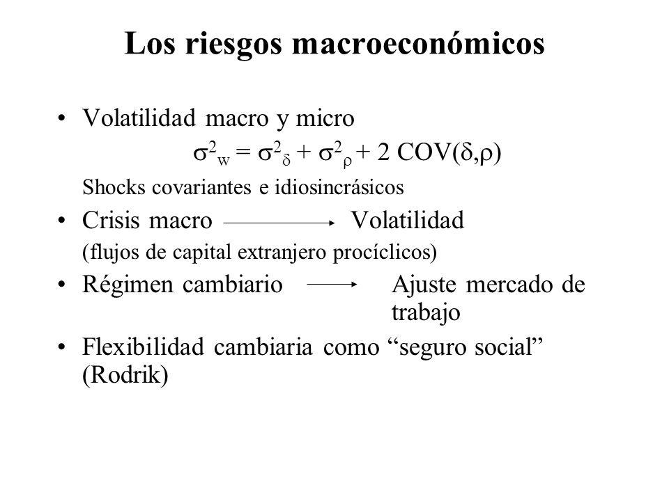 Los riesgos macroeconómicos Volatilidad macro y micro 2 w = 2 + 2 + 2 COV(, ) Shocks covariantes e idiosincrásicos Crisis macro Volatilidad (flujos de capital extranjero procíclicos) Régimen cambiario Ajuste mercado de trabajo Flexibilidad cambiaria como seguro social (Rodrik)