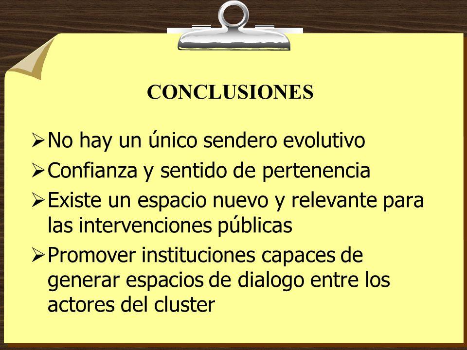 CONCLUSIONES No hay un único sendero evolutivo Confianza y sentido de pertenencia Existe un espacio nuevo y relevante para las intervenciones públicas