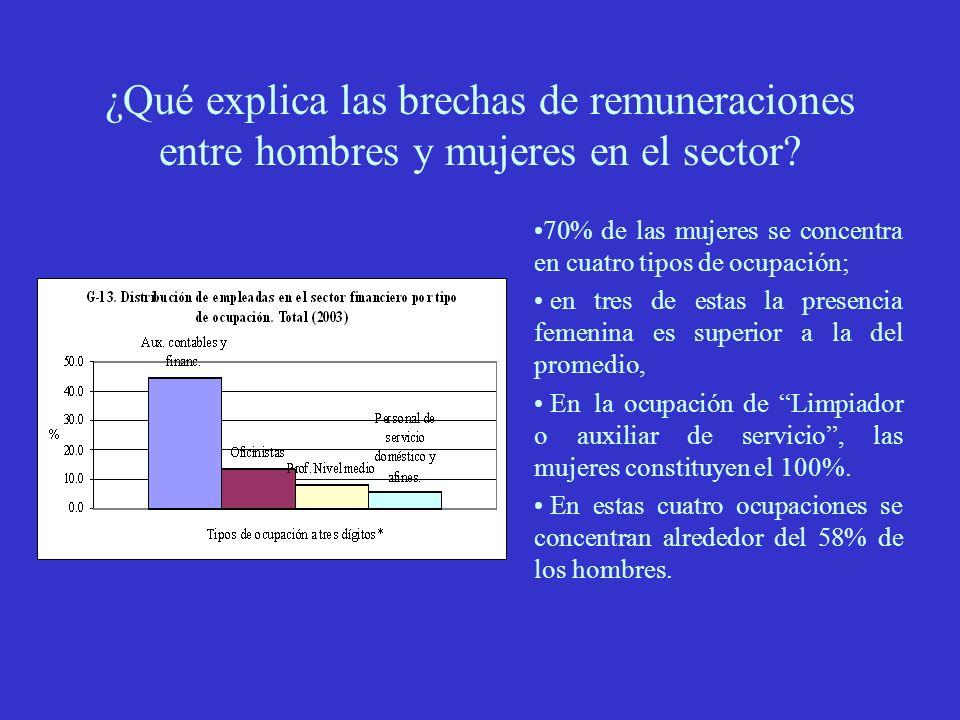 ¿Qué explica las brechas de remuneraciones entre hombres y mujeres en el sector.