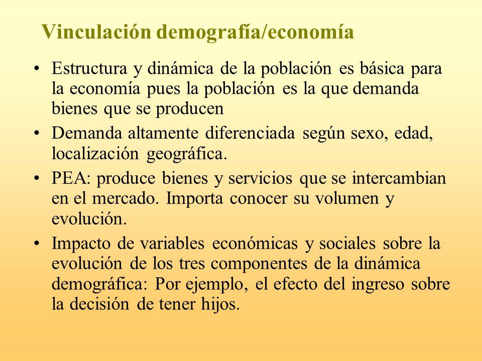 Vinculación demografía/economía Estructura y dinámica de la población es básica para la economía pues la población es la que demanda bienes que se pro