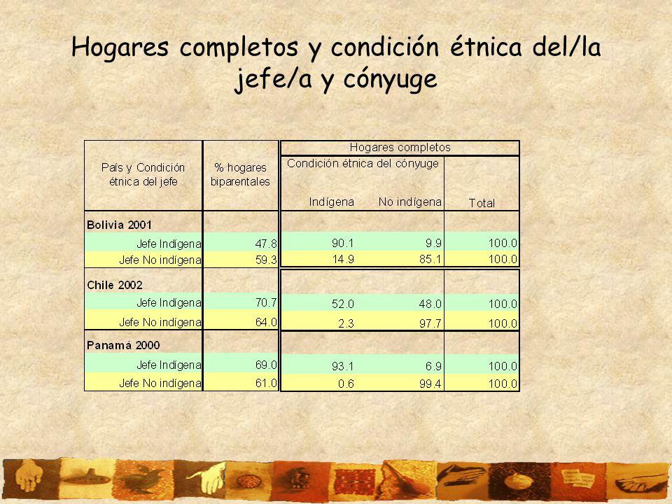 Hogares completos y condición étnica del/la jefe/a y cónyuge