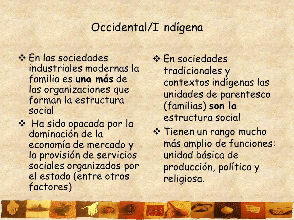 Occidental/I ndígena En las sociedades industriales modernas la familia es una más de las organizaciones que forman la estructura social Ha sido opaca