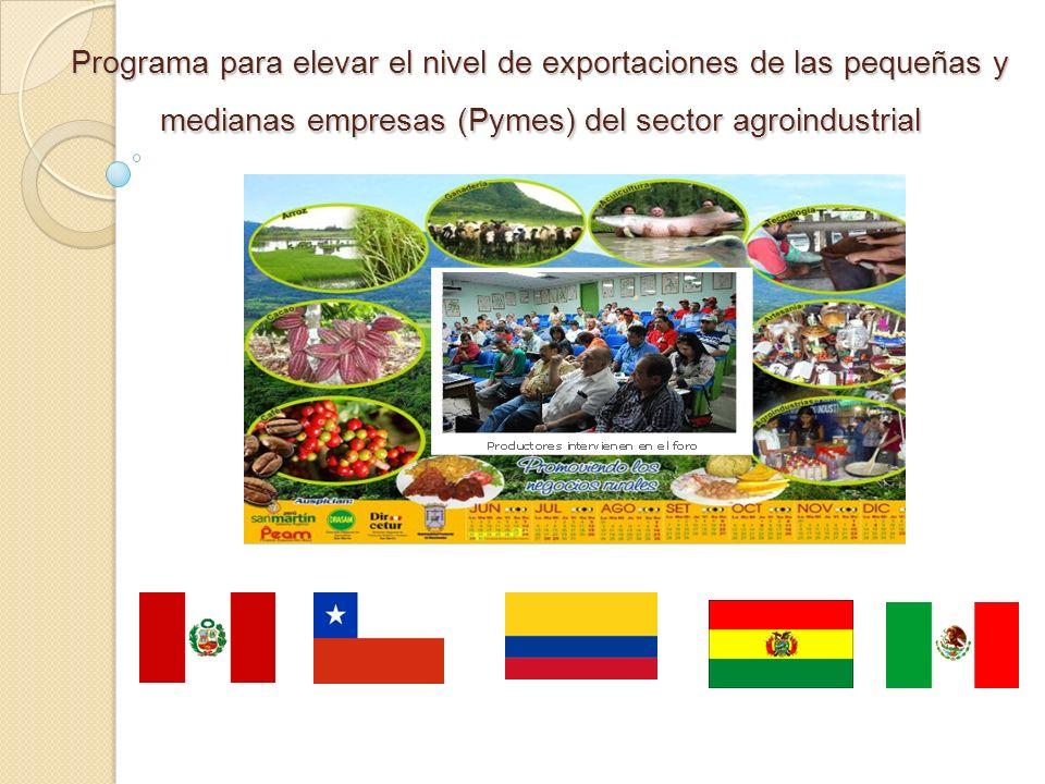 Programa para elevar el nivel de exportaciones de las pequeñas y medianas empresas (Pymes) del sector agroindustrial