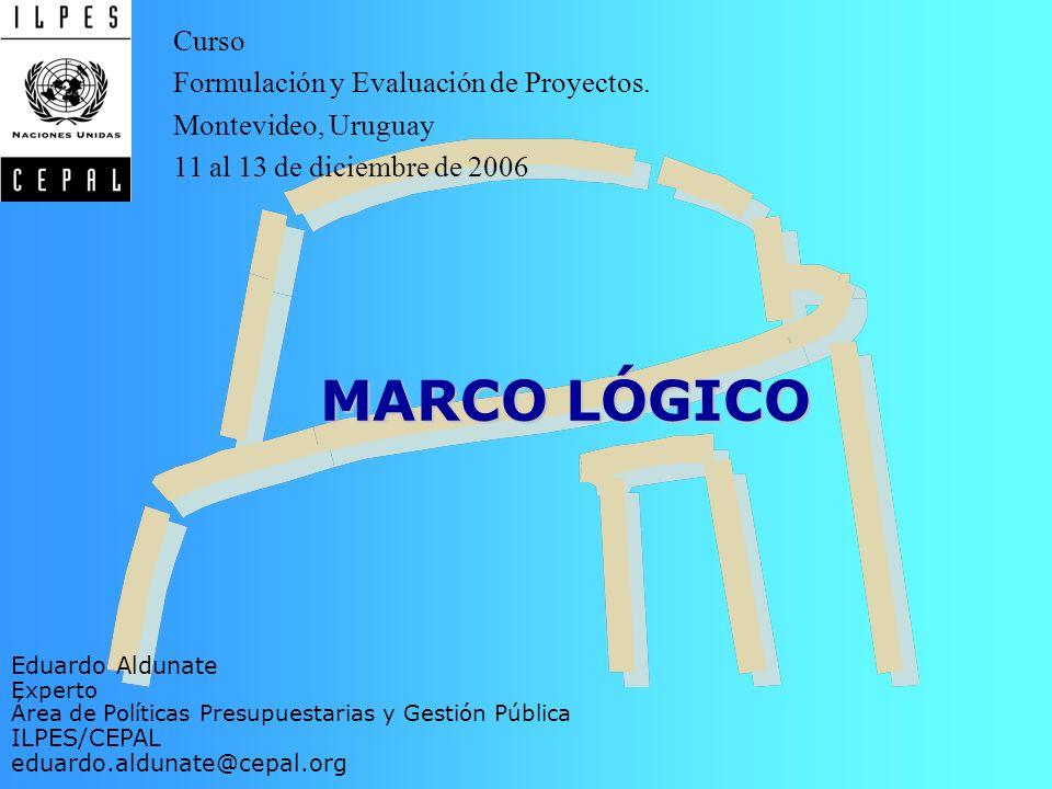 Introducción Objetivos Indicadores Medios de Verificación Supuestos MARCO LÓGICO Eduardo Aldunate Experto Área de Políticas Presupuestarias y Gestión