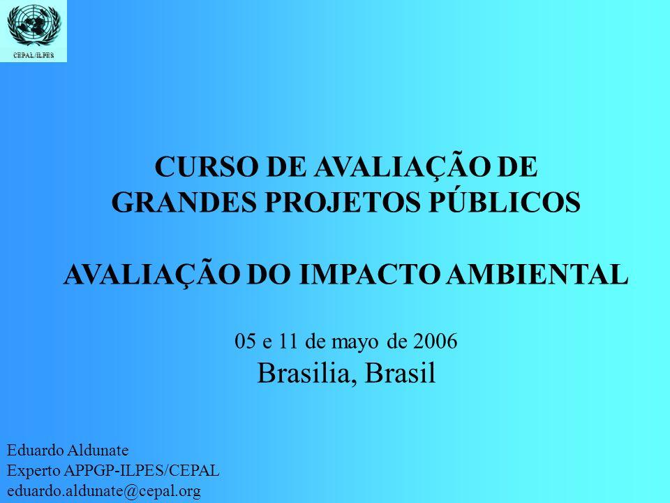 Introdução Identificação Quantificação Valoração CEPAL/ILPES CURSO DE AVALIAÇÃO DE GRANDES PROJETOS PÚBLICOS AVALIAÇÃO DO IMPACTO AMBIENTAL 05 e 11 de