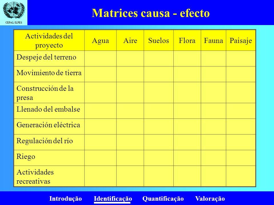Introdução Identificação Quantificação Valoração CEPAL/ILPES Matrices causa - efecto Actividades del proyecto AguaAireSuelosFloraFaunaPaisaje Despeje