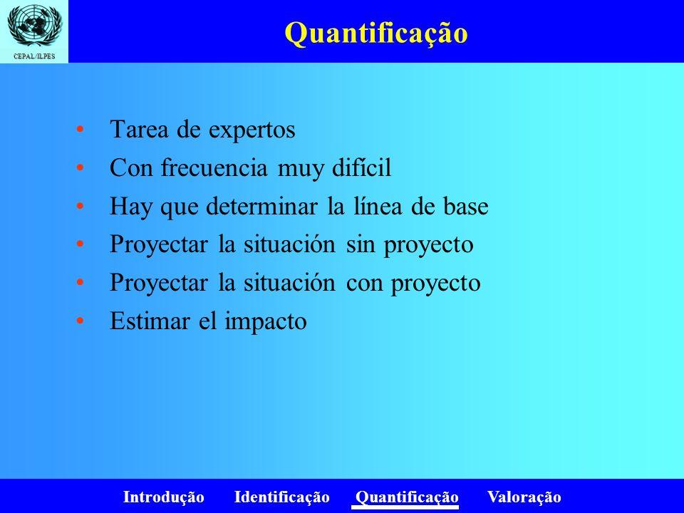 Introdução Identificação Quantificação Valoração CEPAL/ILPES Quantificação Tarea de expertos Con frecuencia muy difícil Hay que determinar la línea de