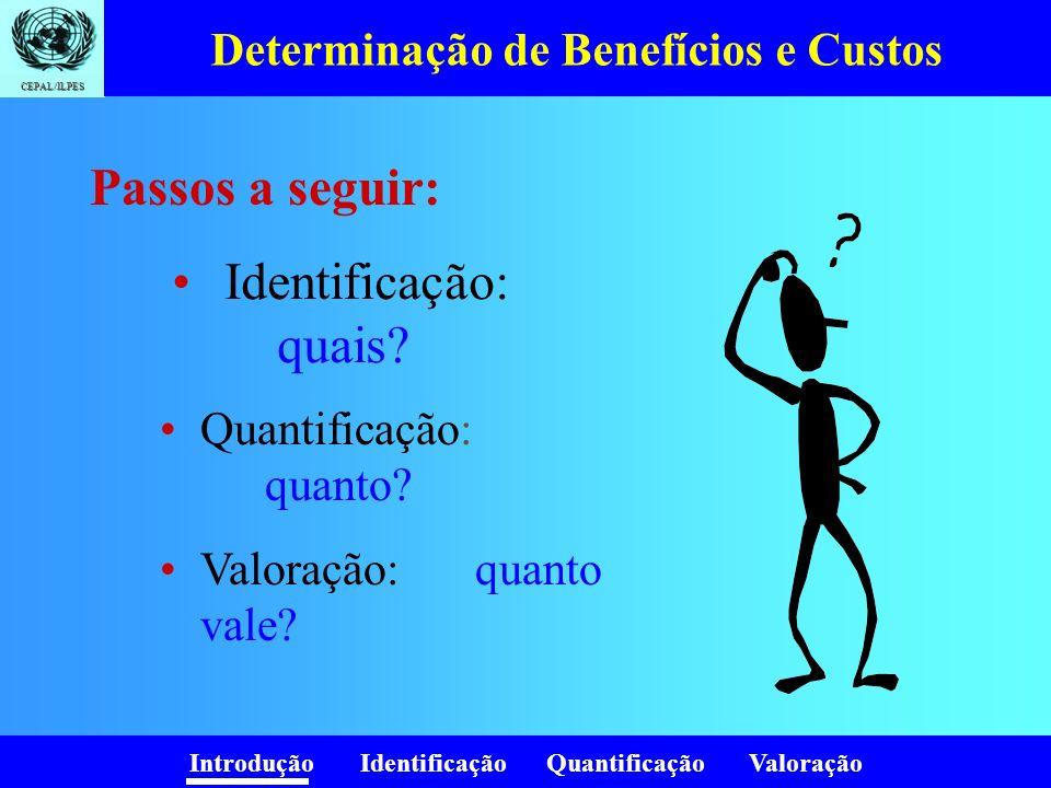 Introdução Identificação Quantificação Valoração CEPAL/ILPES Determinação de Benefícios e Custos Identificação: quais? Passos a seguir: Quantificação: