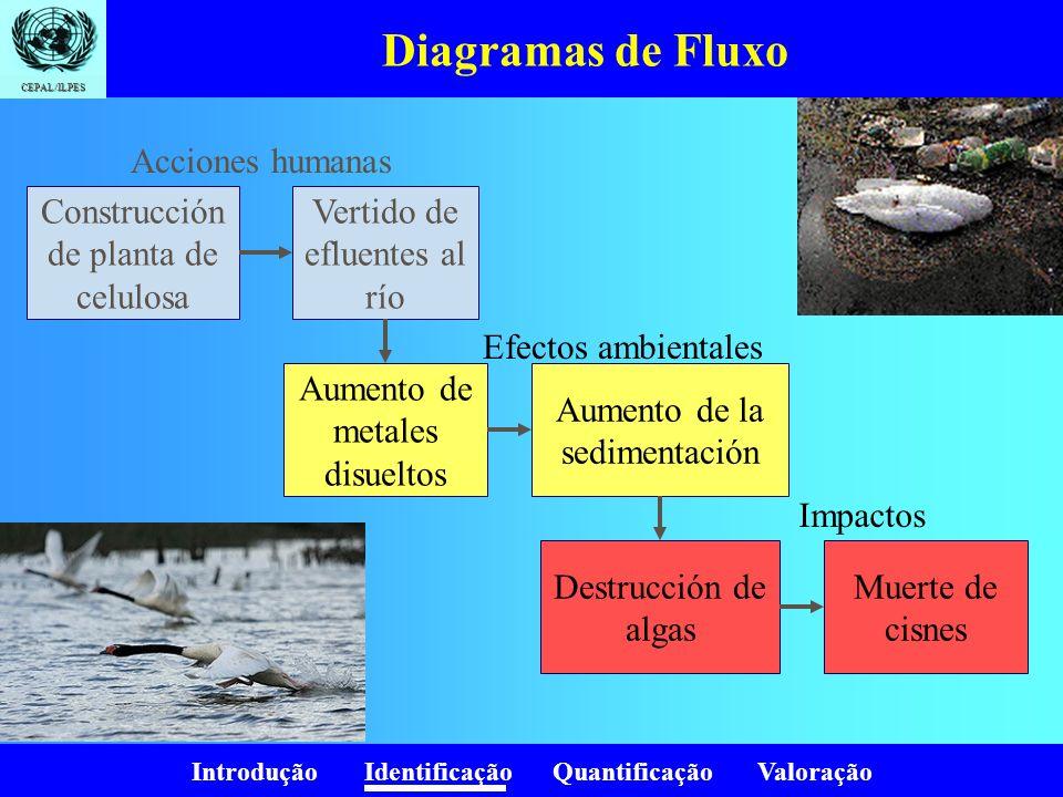 Introdução Identificação Quantificação Valoração CEPAL/ILPES Diagramas de Fluxo Construcción de planta de celulosa Vertido de efluentes al río Aumento
