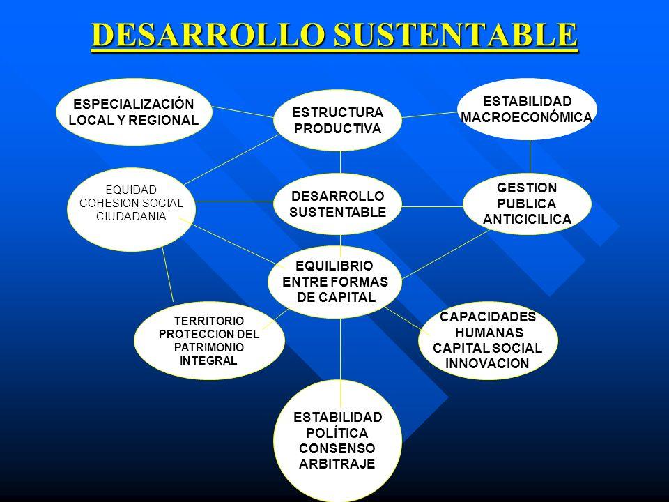 DESARROLLO SUSTENTABLE ESTRUCTURA PRODUCTIVA ESPECIALIZACIÓN LOCAL Y REGIONAL ESTABILIDAD MACROECONÓMICA DESARROLLO SUSTENTABLE EQUILIBRIO ENTRE FORMA