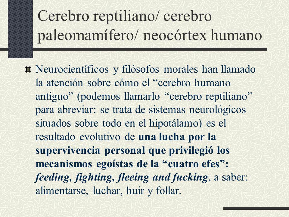 Cerebro reptiliano/ cerebro paleomamífero/ neocórtex humano Neurocientíficos y filósofos morales han llamado la atención sobre cómo el cerebro humano