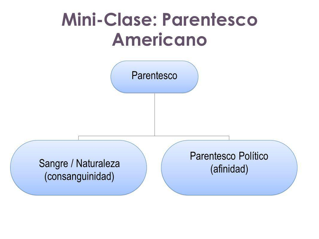 Parentesco Sangre / Naturaleza (consanguinidad) Parentesco Político (afinidad) Mini-Clase: Parentesco Americano