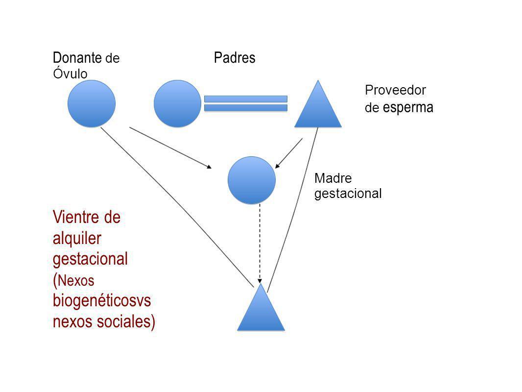 Vientre de alquiler gestacional ( Nexos biogenéticosvs nexos sociales) Padres Madre gestacional Donante de Óvulo Proveedor de esperma