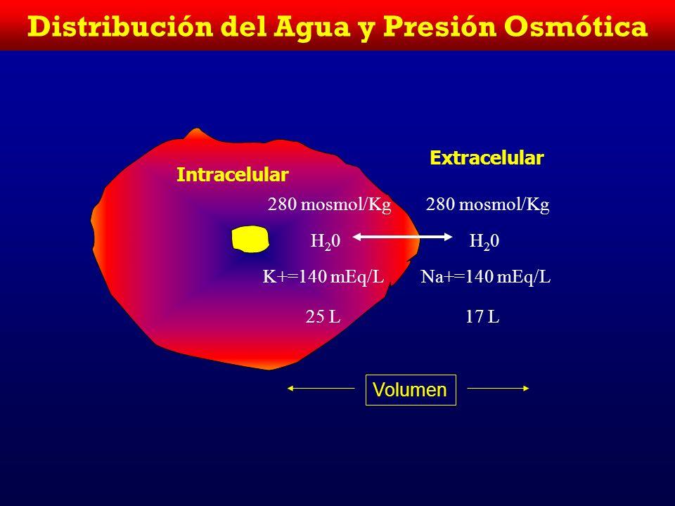 Distribución del Agua ACT(TBW)=60% Peso corporal 50% Peso corporal 60% ACT es IC 40% ACT ES EC 1/5 EC es intraplasmático Un paciente de 70 Kg de peso