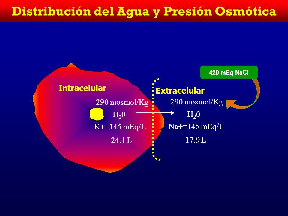 Distribución del Agua y Presión Osmótica Intracelular Extracelular 280 mosmol/Kg H20H20 K+=140 mEq/L 25 L 280 mosmol/Kg H20H20 Na+=140 mEq/L 17 L Volu