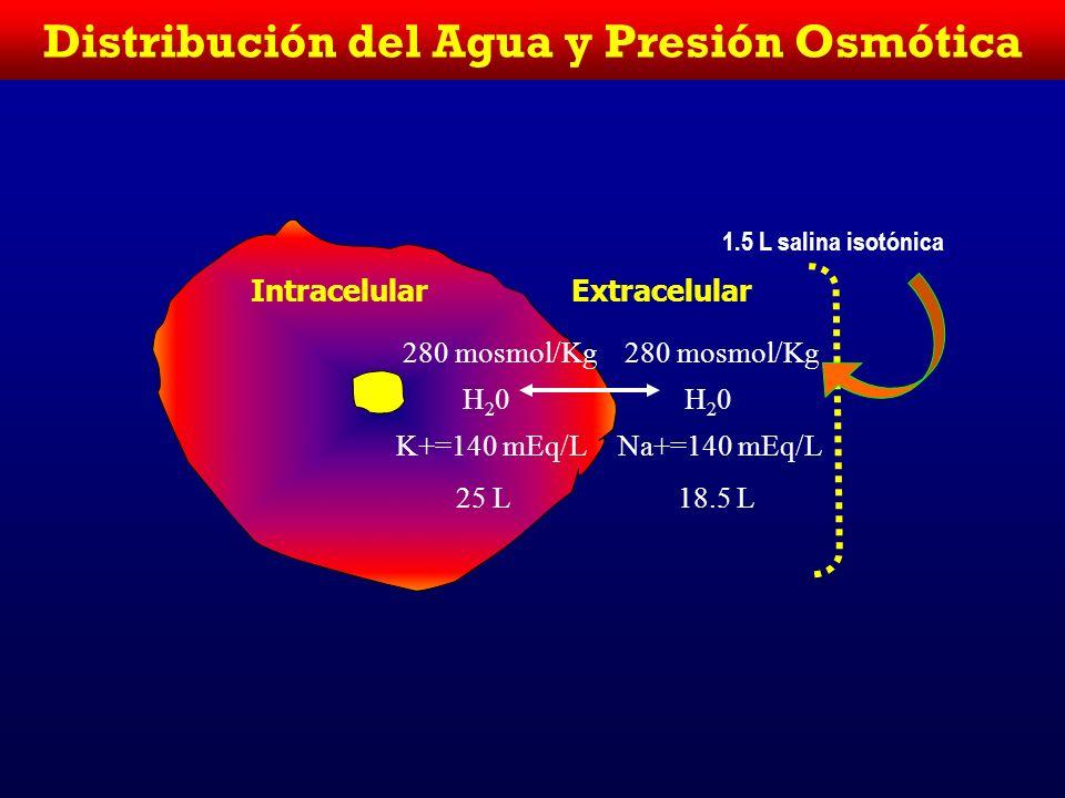Intracelular Extracelular 270 mosmol/L H20H20 K+=135 mEq/L 25.9 L 270 mosmol/Kg H20H20 Na+=135 mEq/L 17.6 L 1.5 L H 2 O Distribución del Agua y Presió