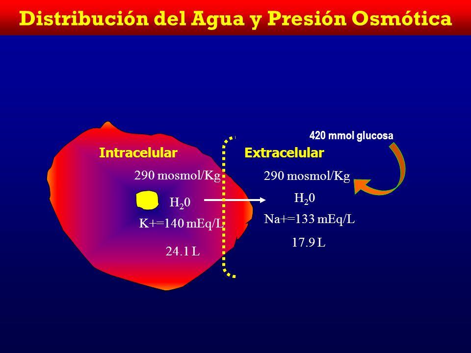IntracelularExtracelular 280 mosmol/Kg H20H20 K+=140 mEq/L 25 L 280 mosmol/Kg H20H20 Na+=140 mEq/L 18.5 L 1.5 L salina isotónica