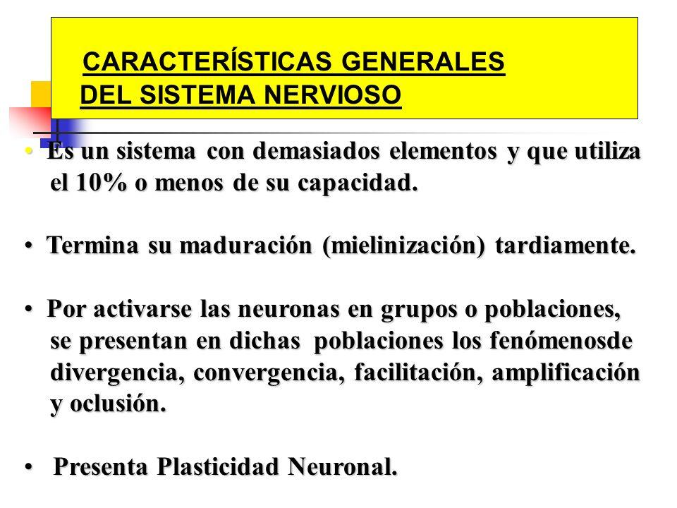 CARACTERÍSTICAS GENERALES DEL SISTEMA NERVIOSO Es un sistema con demasiados elementos y que utiliza Es un sistema con demasiados elementos y que utili