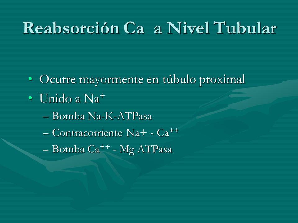 Reabsorción Ca a Nivel Tubular Ocurre mayormente en túbulo proximalOcurre mayormente en túbulo proximal Unido a Na +Unido a Na + –Bomba Na-K-ATPasa –C
