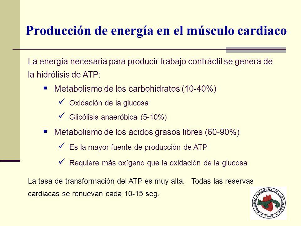 Producción de energía en el músculo cardiaco La energía necesaria para producir trabajo contráctil se genera de la hidrólisis de ATP: Metabolismo de l