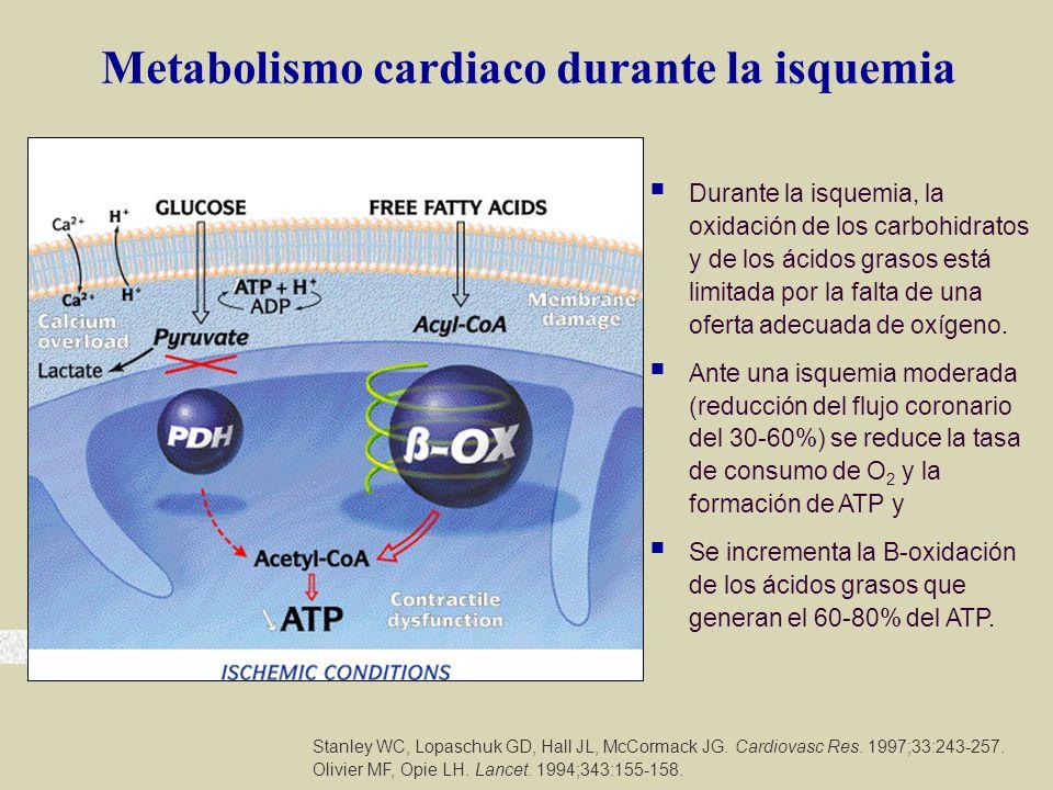 Metabolismo cardiaco durante la isquemia Stanley WC, Lopaschuk GD, Hall JL, McCormack JG. Cardiovasc Res. 1997;33:243-257. Olivier MF, Opie LH. Lancet