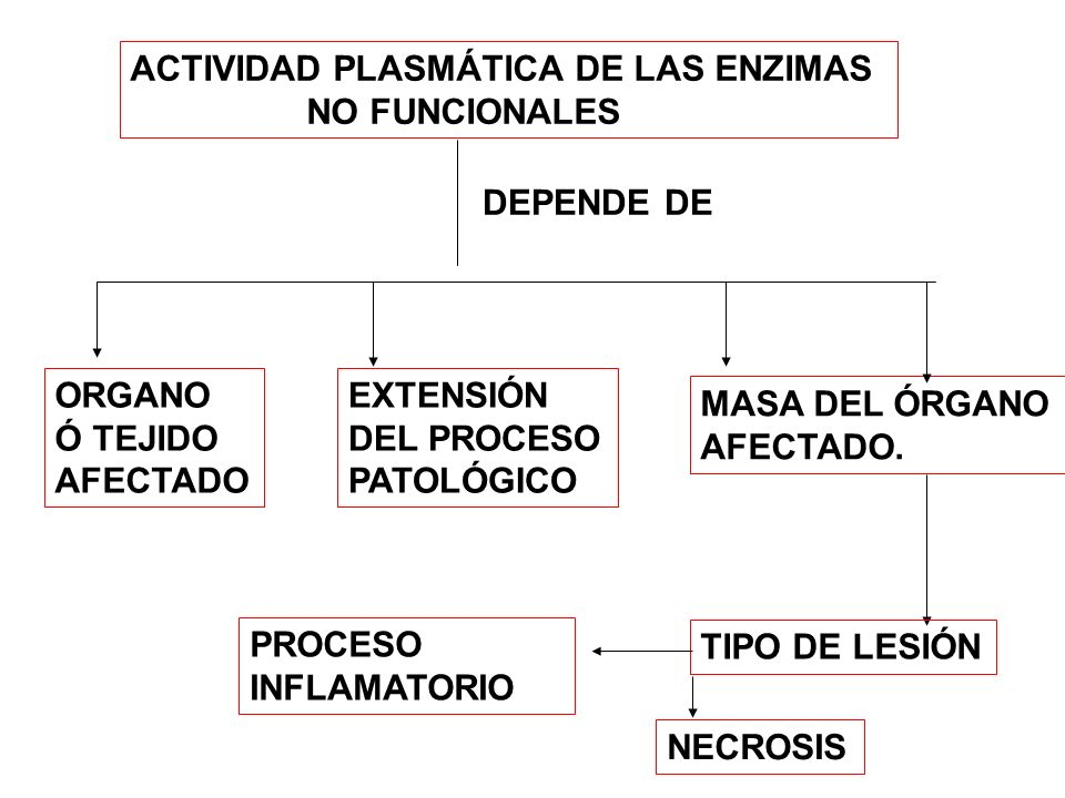 PERFILES ENZIMÁTICOS SON CARDÍACO HEPÁTICO MUSCULAR ÓSEO CEREBRAL CK (BM) AST ( cit.,mit) ALT LDH-1(H 4 ) ALT AST LDH 5 GGT CK-MM LDH-5 AP CK-BB