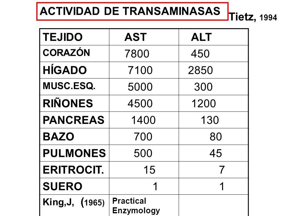 %CK-3 CK-2CK-1 Mus.esq250098.91.1 0.06 cerebro 555 0 2.7 97.3 corazón 473 78.7 20 1.3 estómago 190 4.3 0 95.7 Intestino delgado 1121.2 0 98.8 colon 138 2.1 0 97.8 riñones 32 2.8 0 97.2 pulmón 27 -720 - 418 - 69 ´hígado.
