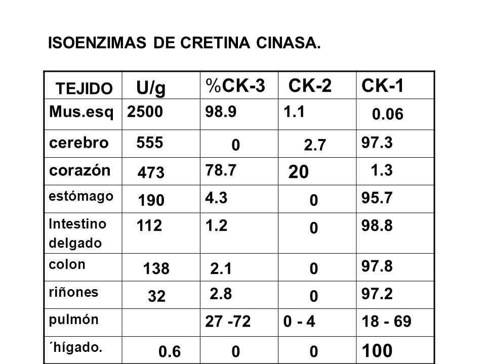 %CK-3 CK-2CK-1 Mus.esq250098.91.1 0.06 cerebro 555 0 2.7 97.3 corazón 473 78.7 20 1.3 estómago 190 4.3 0 95.7 Intestino delgado 1121.2 0 98.8 colon 13