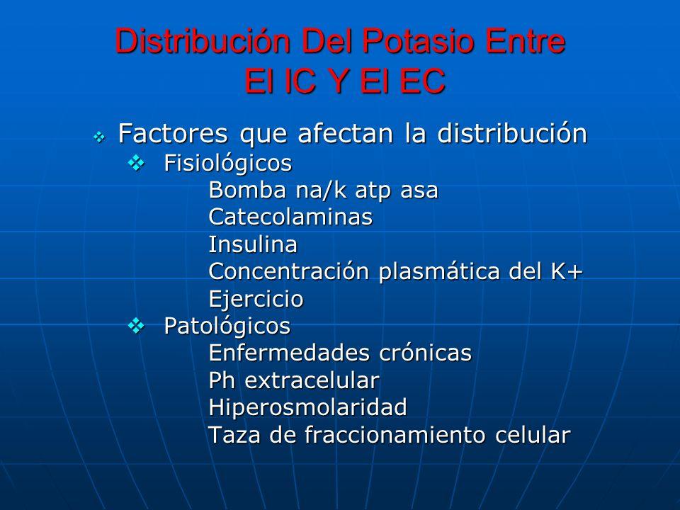 Distribución Del Potasio Entre El IC Y El EC Factores que afectan la distribución Factores que afectan la distribución Fisiológicos Fisiológicos Bomba