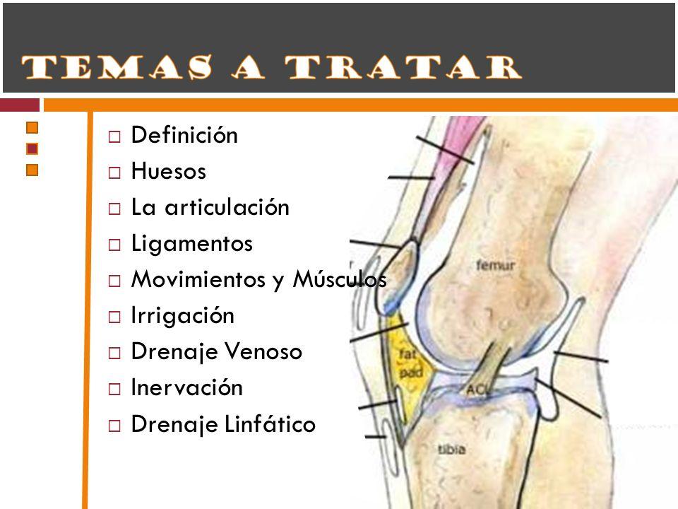 Definición Huesos La articulación Ligamentos Movimientos y Músculos Irrigación Drenaje Venoso Inervación Drenaje Linfático