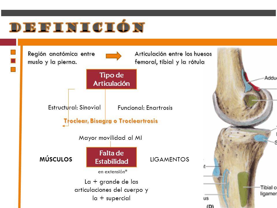 Región anatómica entre muslo y la pierna. Articulación entre los huesos femoral, tibial y la rótula Tipo de Articulación Falta de Estabilidad La + gra