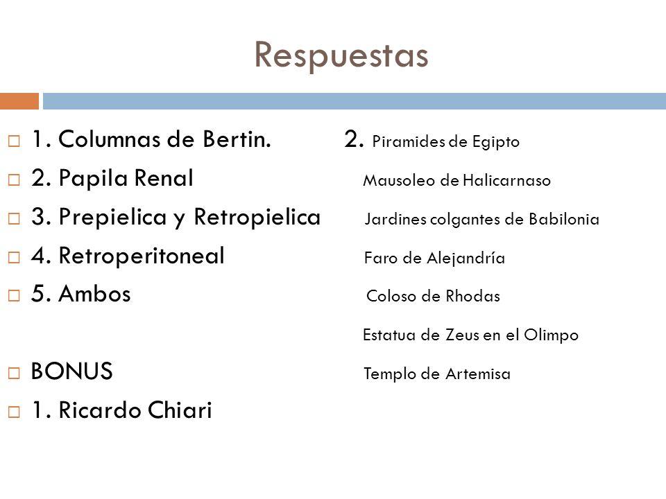 Respuestas 1. Columnas de Bertin. 2. Piramides de Egipto 2. Papila Renal Mausoleo de Halicarnaso 3. Prepielica y Retropielica Jardines colgantes de Ba
