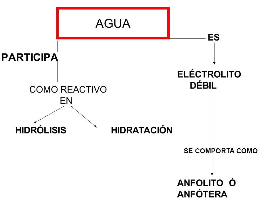 AGUA PARTICIPA COMO REACTIVO EN HIDRÓLISIS HIDRATACIÓN ES ELÉCTROLITO DÉBIL SE COMPORTA COMO ANFOLITO Ó ANFÓTERA