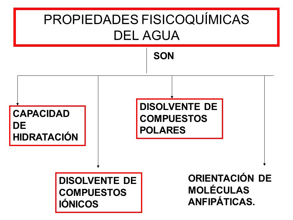 PROPIEDADES FISICOQUÍMICAS DEL AGUA SON CAPACIDAD DE HIDRATACIÓN DISOLVENTE DE COMPUESTOS IÓNICOS DISOLVENTE DE COMPUESTOS POLARES ORIENTACIÓN DE MOLÉ