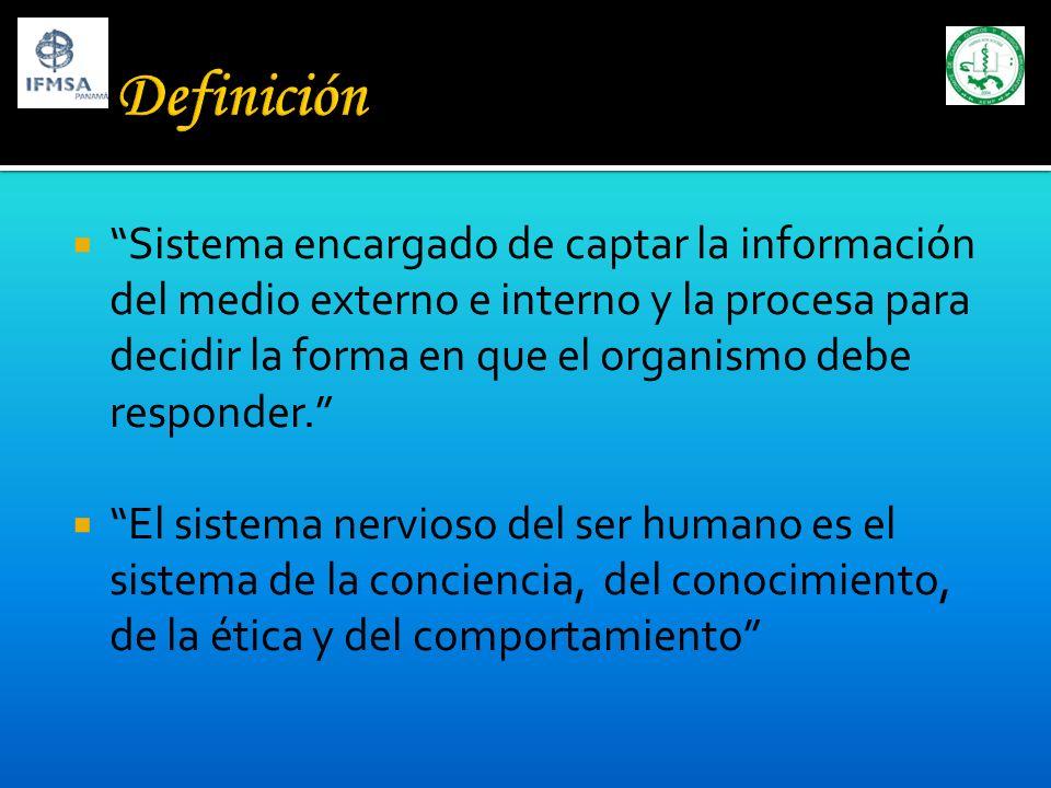 Sistema encargado de captar la información del medio externo e interno y la procesa para decidir la forma en que el organismo debe responder. El siste