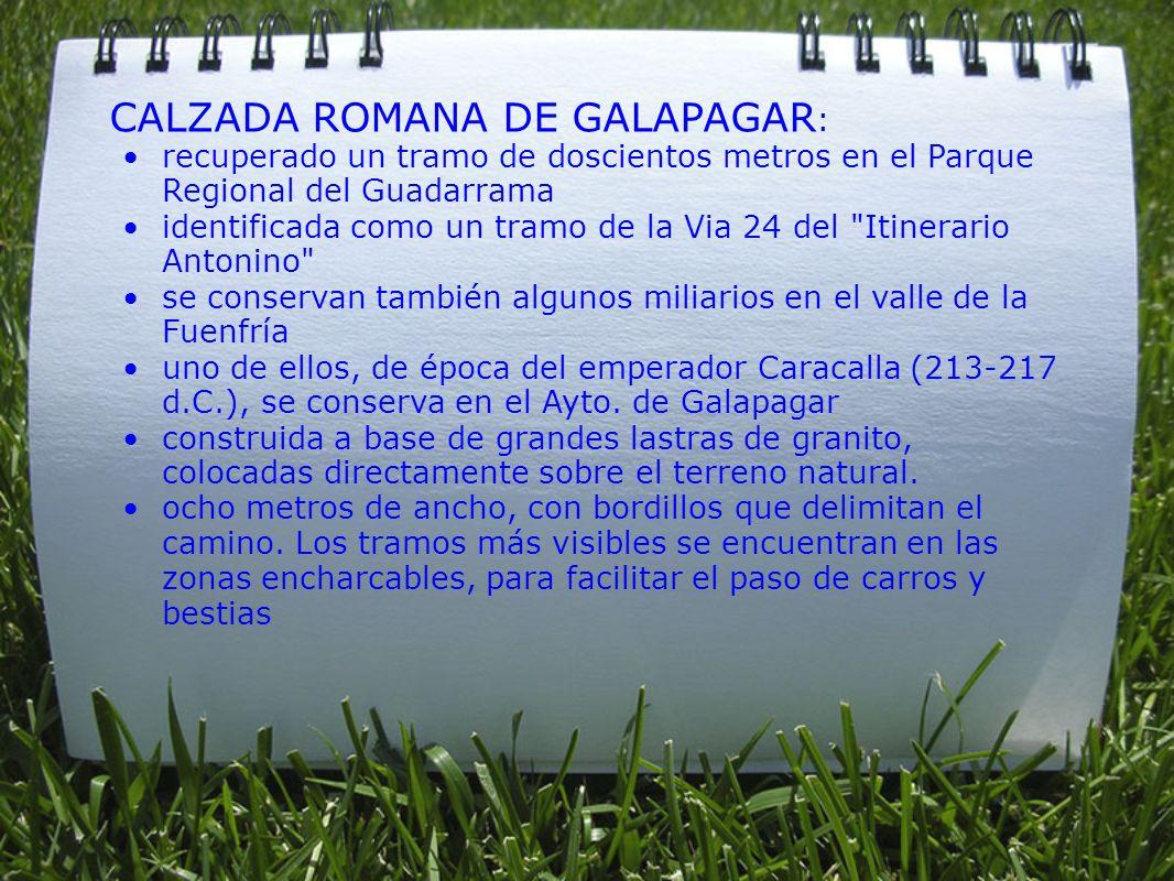 CALZADA ROMANA DE GALAPAGAR : recuperado un tramo de doscientos metros en el Parque Regional del Guadarrama identificada como un tramo de la Via 24 de