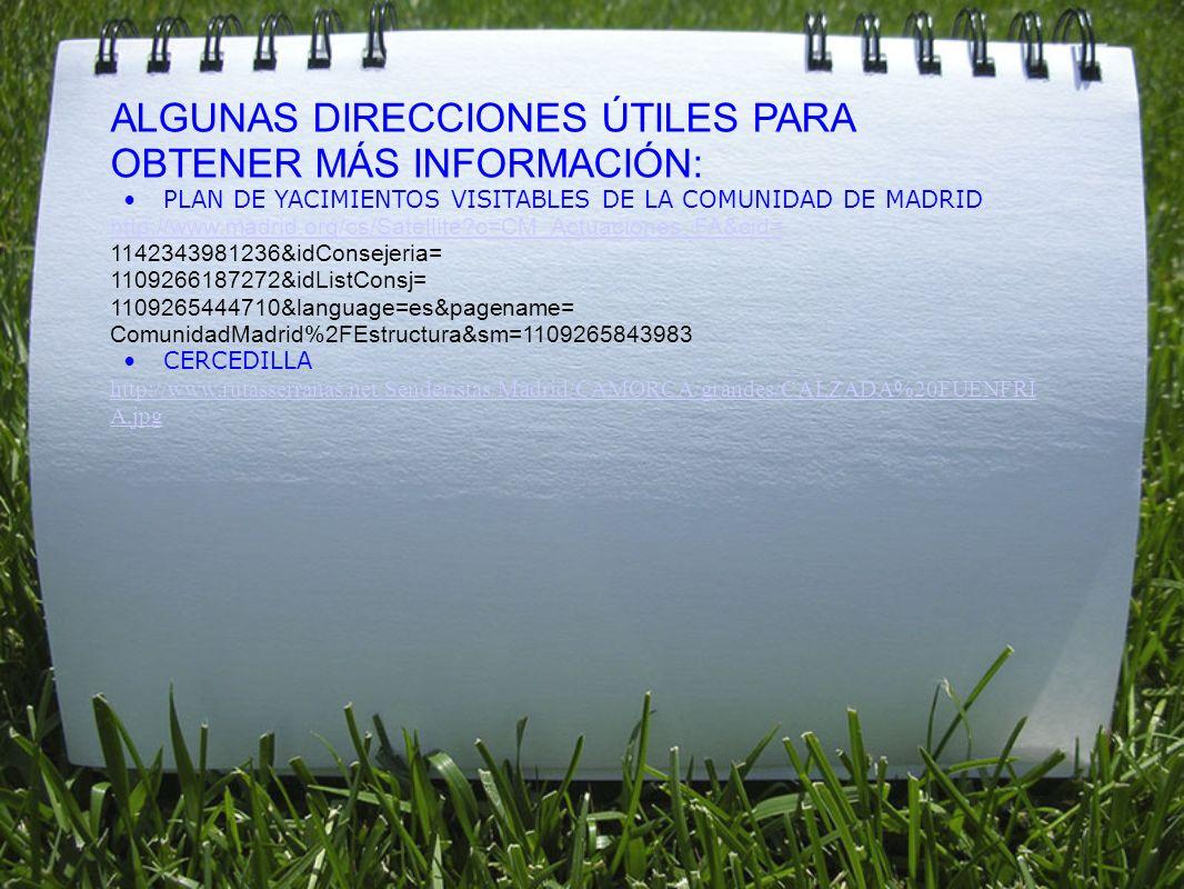 ALGUNAS DIRECCIONES ÚTILES PARA OBTENER MÁS INFORMACIÓN: PLAN DE YACIMIENTOS VISITABLES DE LA COMUNIDAD DE MADRID http://www.madrid.org/cs/Satellite?c