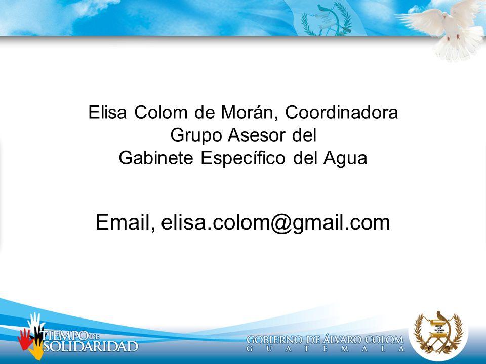Elisa Colom de Morán, Coordinadora Grupo Asesor del Gabinete Específico del Agua Email, elisa.colom@gmail.com