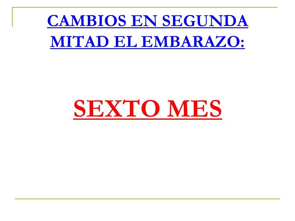 CAMBIOS EN SEGUNDA MITAD EL EMBARAZO: SEXTO MES