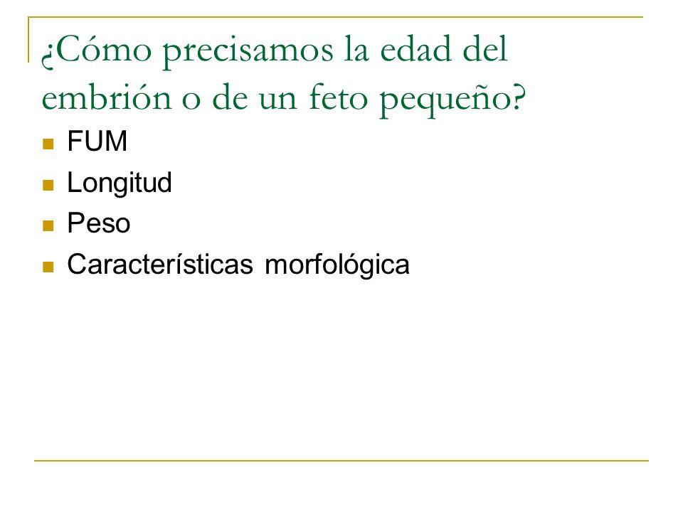 ¿Cómo precisamos la edad del embrión o de un feto pequeño? FUM Longitud Peso Características morfológica