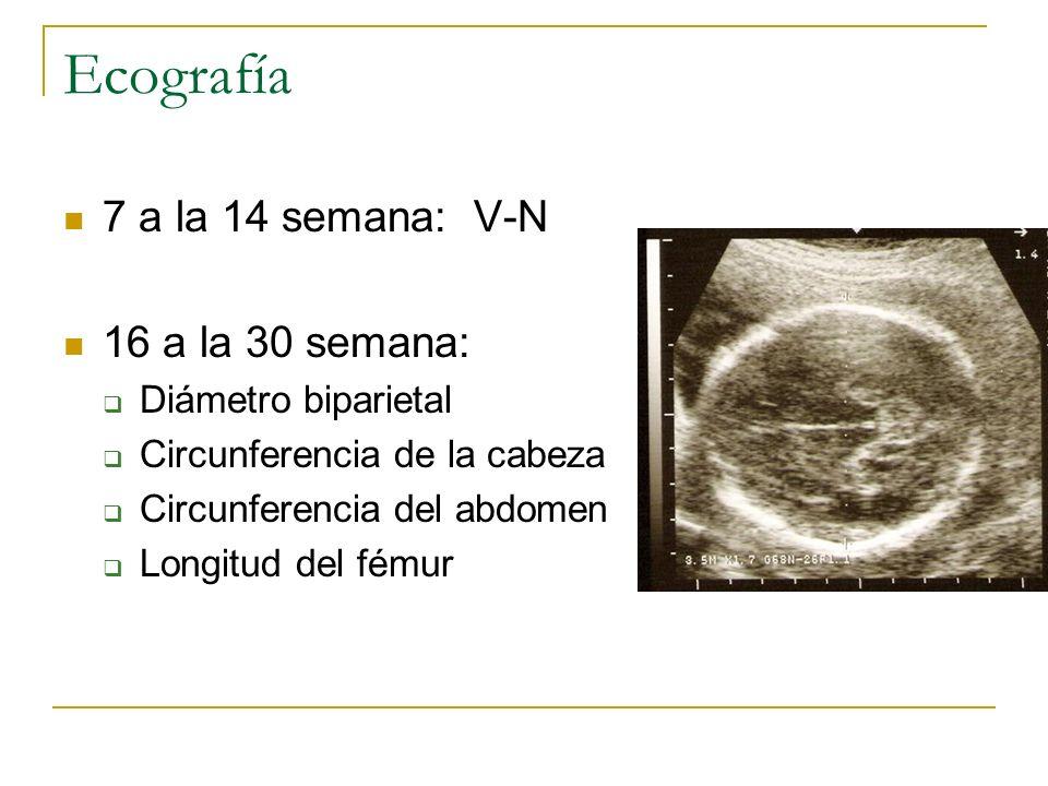 Ecografía 7 a la 14 semana: V-N 16 a la 30 semana: Diámetro biparietal Circunferencia de la cabeza Circunferencia del abdomen Longitud del fémur