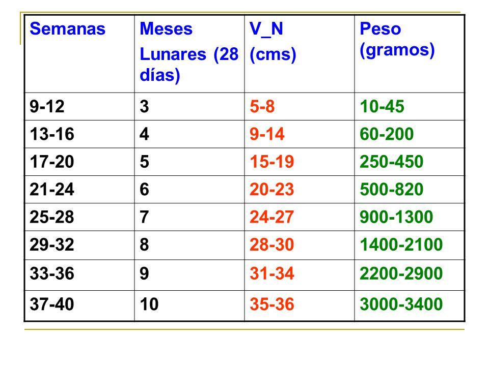 SemanasMeses Lunares (28 días) V_N (cms) Peso (gramos) 9-1235-810-45 13-1649-1460-200 17-20515-19250-450 21-24620-23500-820 25-28724-27900-1300 29-328