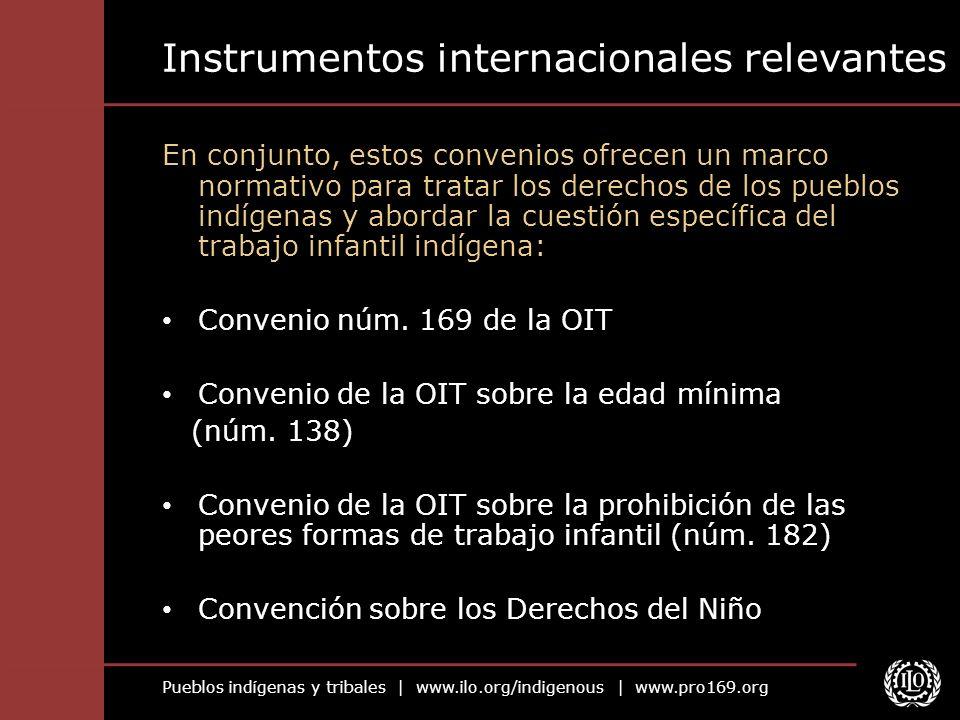 Pueblos indígenas y tribales   www.ilo.org/indigenous   www.pro169.org Instrumentos internacionales relevantes En conjunto, estos convenios ofrecen un